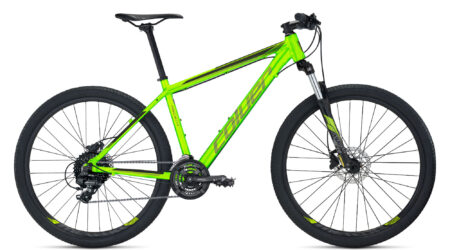 Coluer Ascent 293 Verde